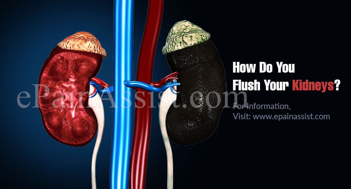 How Do You Flush Your Kidneys?