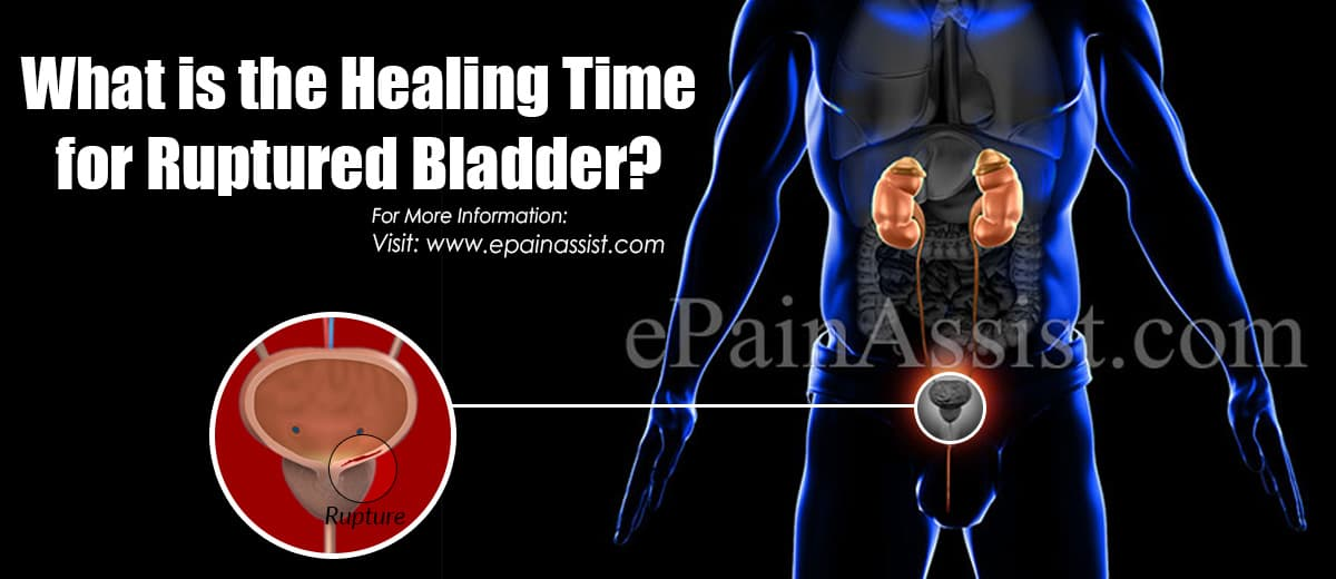 What is the Healing Time for Ruptured Bladder?