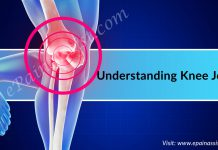 Understanding Knee Joint, Its Structure, 6 Causes of Knee Joint Pain
