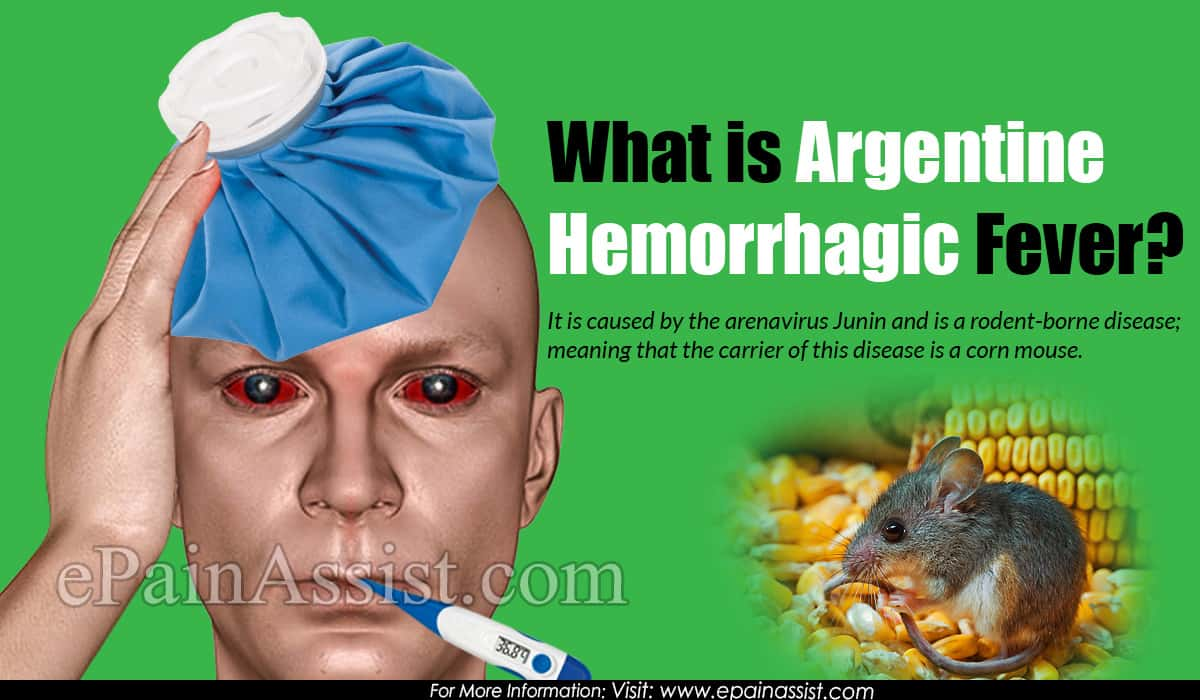 What is Argentine Hemorrhagic Fever?