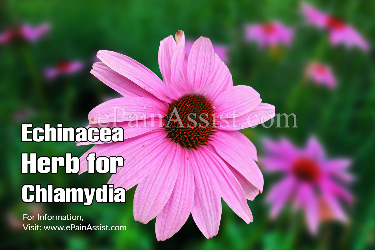 Side-Effects of Echinacea