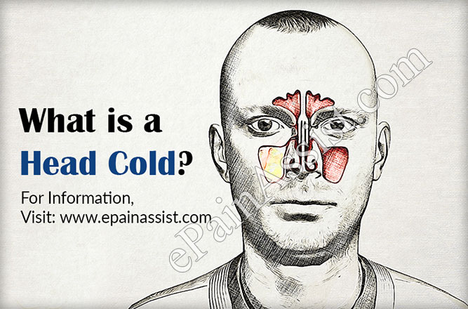 What is a Head Cold?