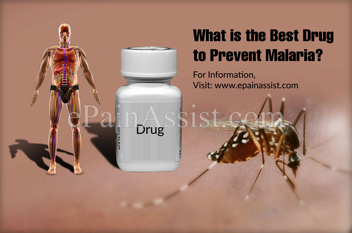 What is the Best Drug To Prevent Malaria?