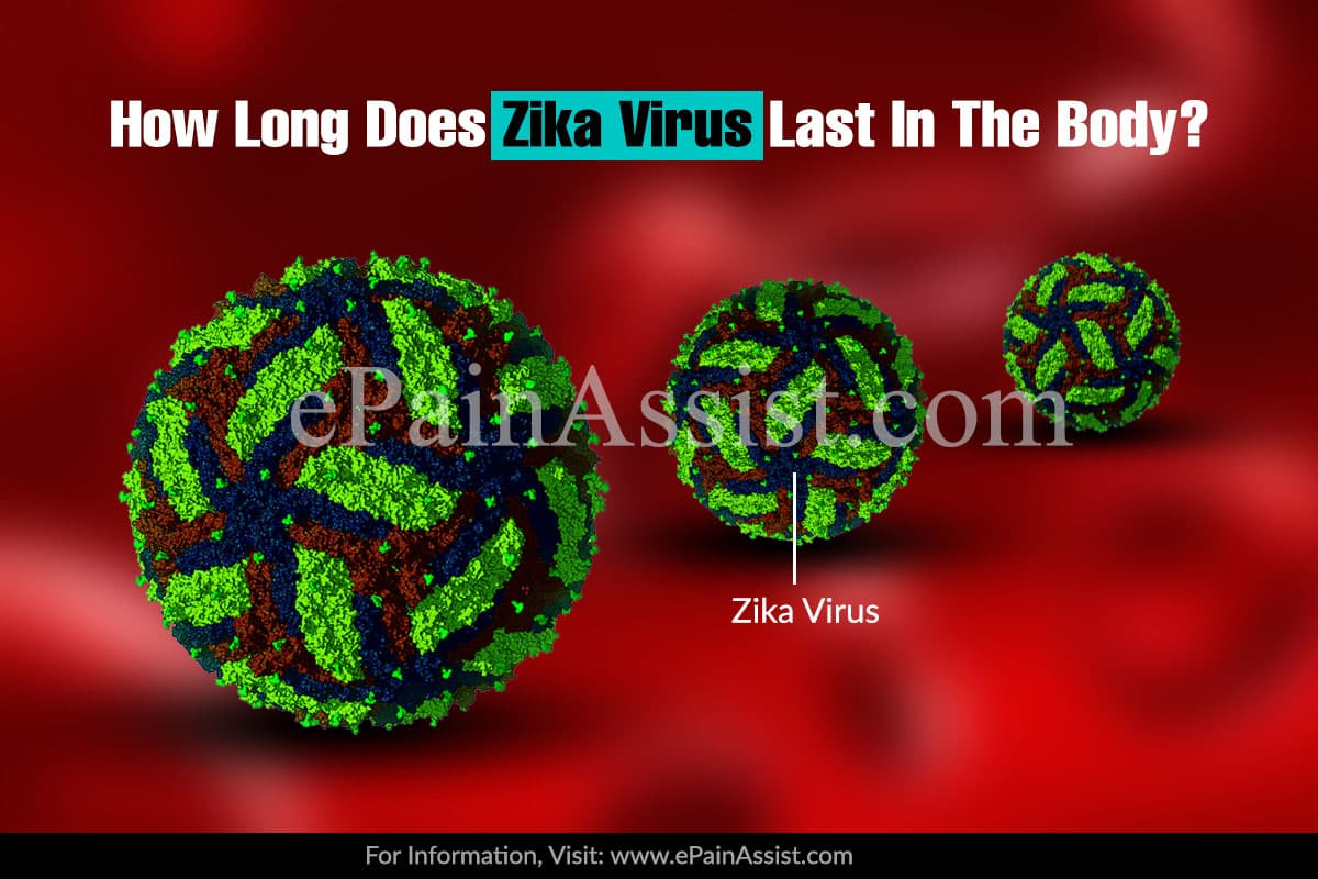 How Long Does Zika Virus Last In The Body?