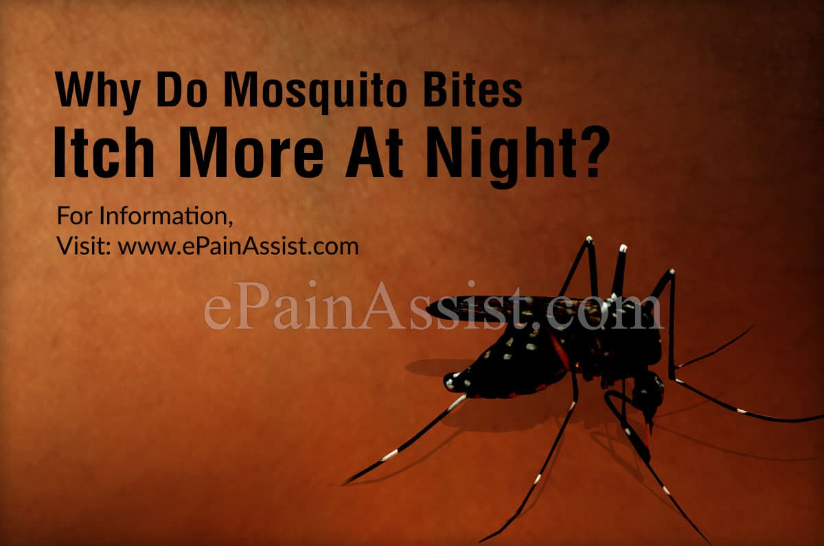 Why Do Mosquito Bites Itch More At Night?