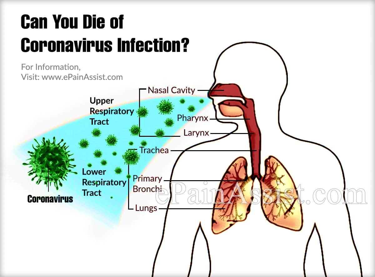 Can You Die of Coronavirus Infection