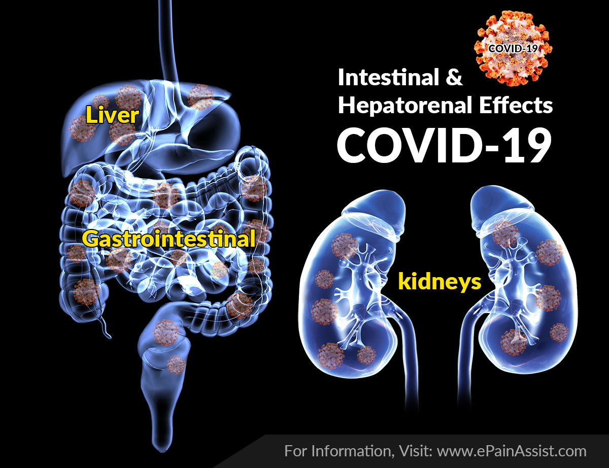 Intestinal and Hepatorenal Effects in COVID-19