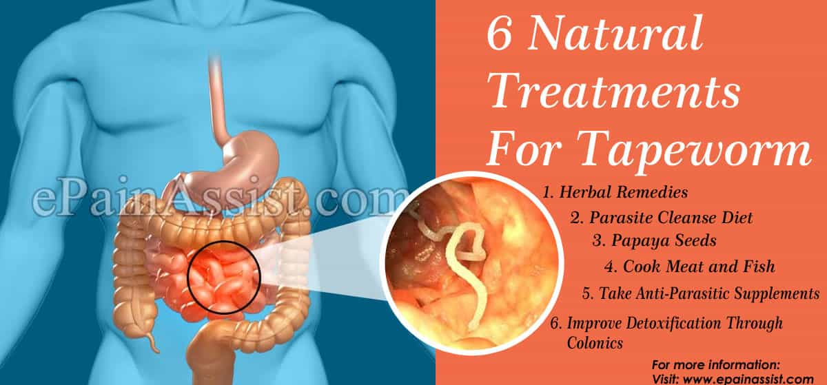 6 Natural Treatments For Tapeworm