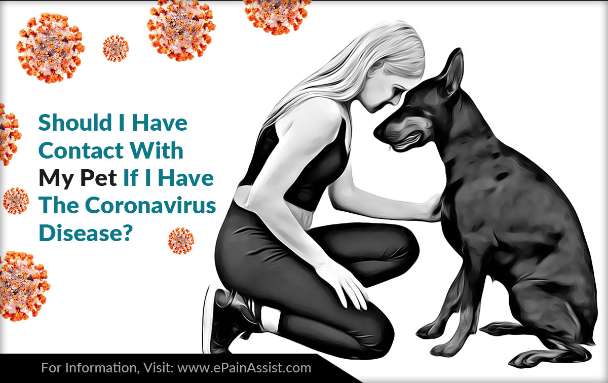 Should I Have Contact With My Pet If I Have The Coronavirus Disease?