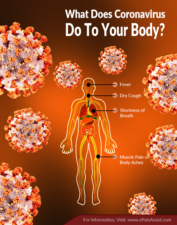 What Does Coronavirus Do To Your Body?