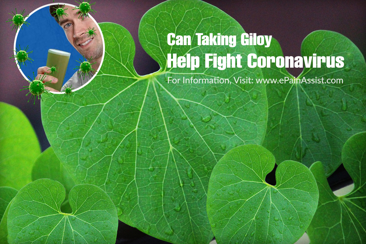 Can Taking Giloy Help Fight Viral Infections?