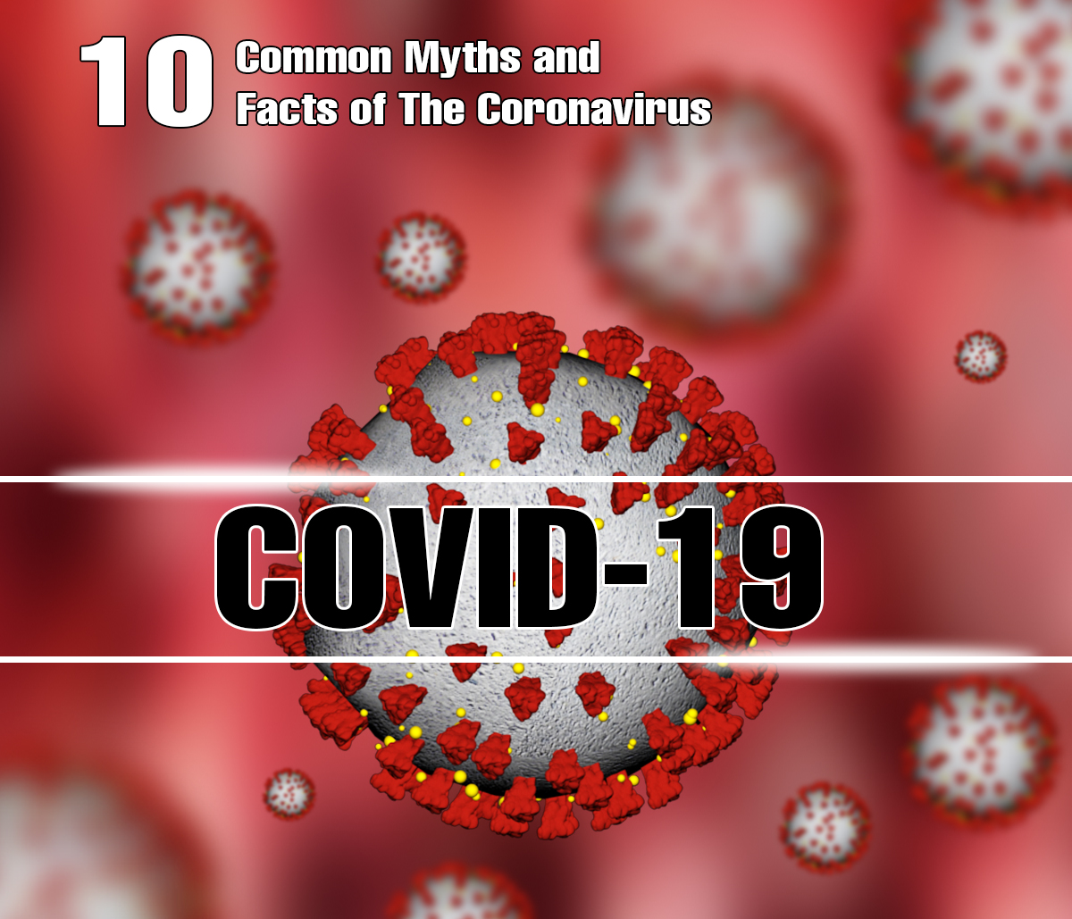 10 Common Myths and Facts of The Coronavirus