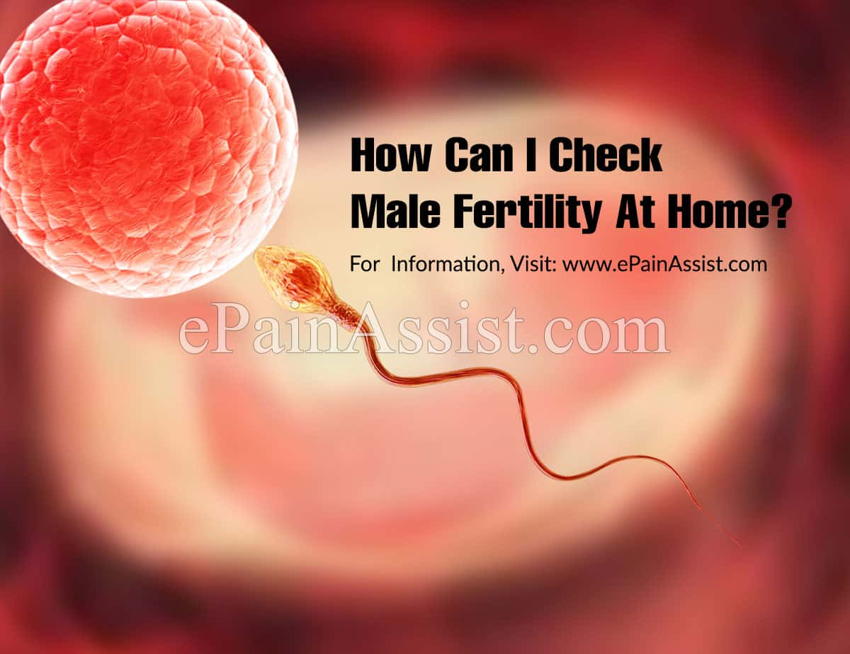 How Can I Check Male Fertility At Home?