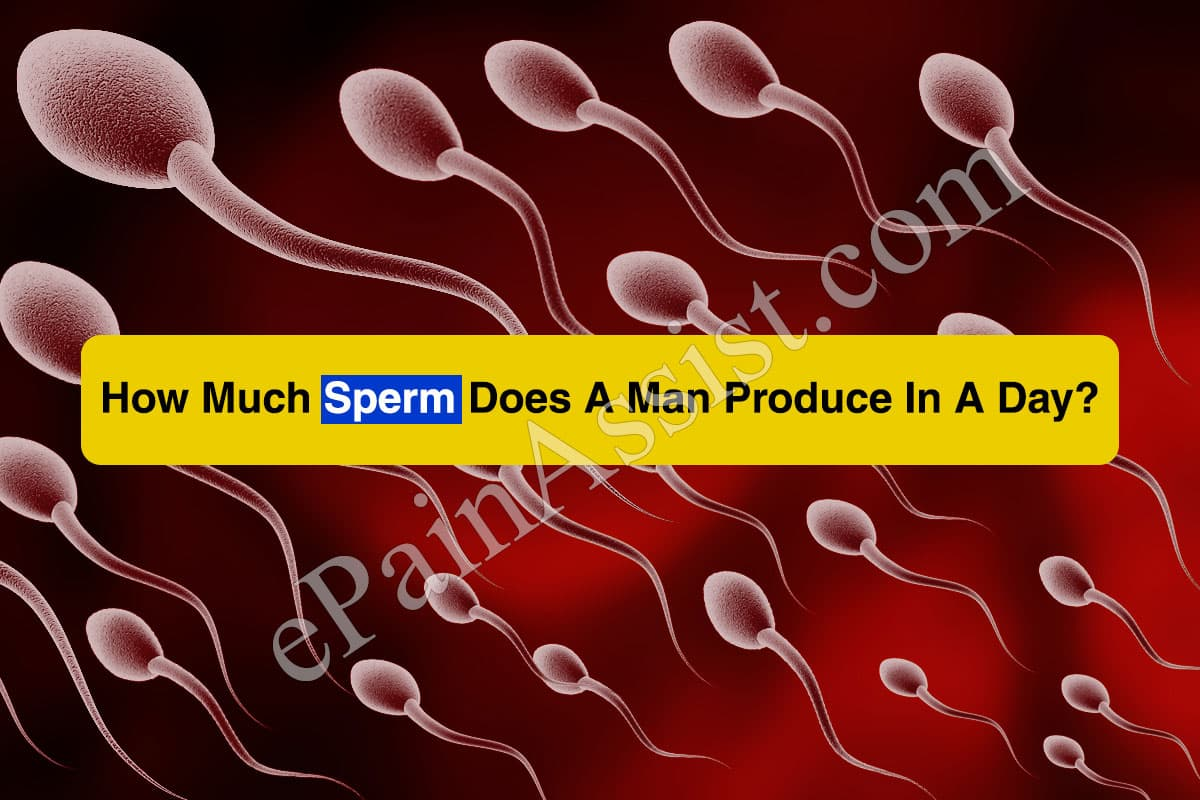 How Much Sperm Does A Man Produce In A Day?