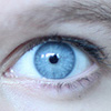 Can Anisocoria Be Cured?