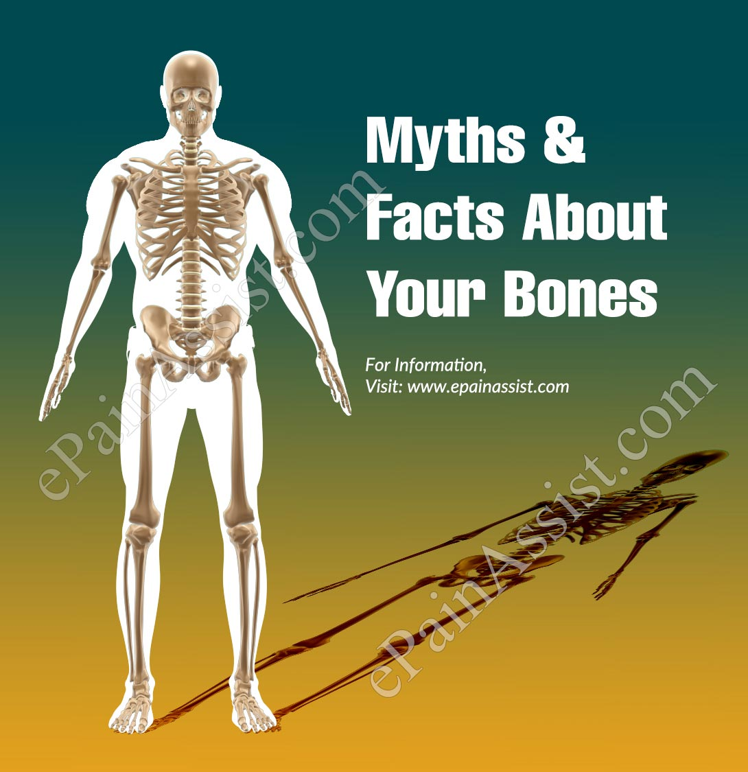 Myths & Facts About Your Bones