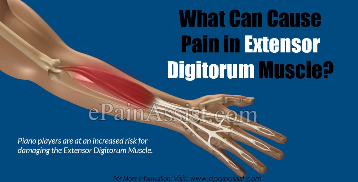 What Can Cause Pain in Extensor Digitorum Muscle?