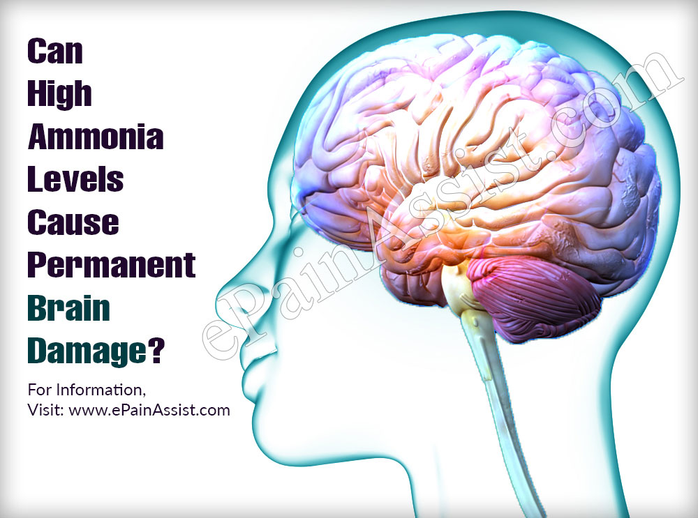 Can High Ammonia Levels Cause Permanent Brain Damage?