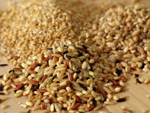 Switching to Whole Grain Foods Could Trim Your Waistline