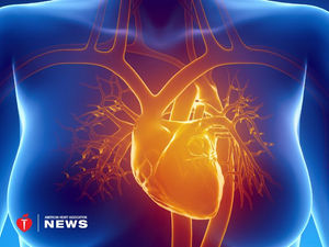 Shedding Protective Layer of Thigh Fat Might Help the Heart