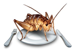 Can Eating Crickets Boost Your Health?