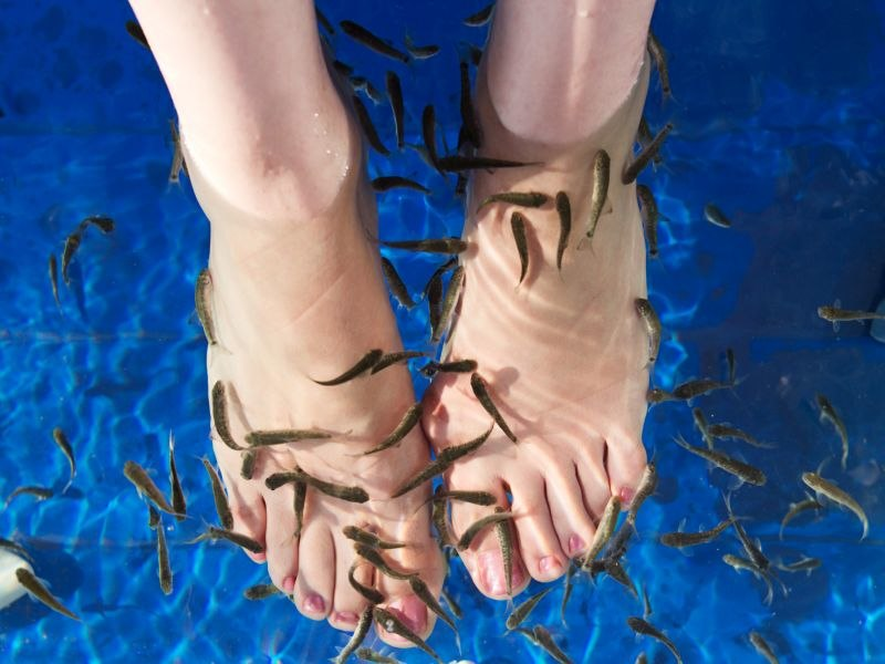 Fish Pedicure Caused One Woman's Toenails to Stop Growing