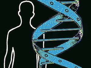 Gene Test Predicts Risk of 5 Common Diseases