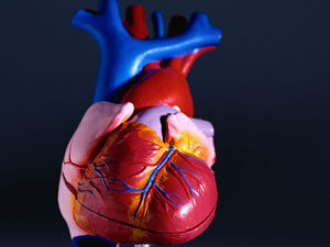 'Hole in Heart' Defect May Raise Stroke Risk After Surgery