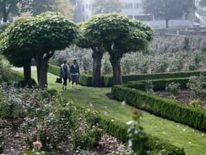 More Green Space May Mean a Healthier Heart