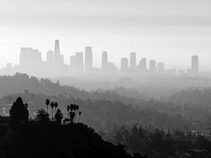 Smog Might Cloud Your Memory