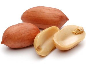 After Peanut Allergy Rx, Eating Small Bits of Peanut Might Help: Study