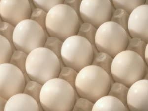 Treatment May Allow Allergic Kids to Eat Eggs Safely: Study