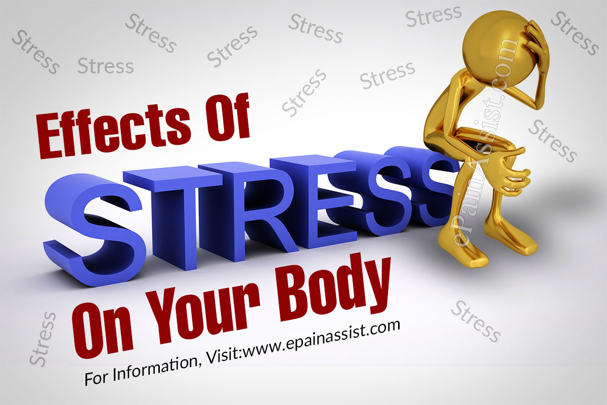 What Are The Effects Of Stress On Your Body?