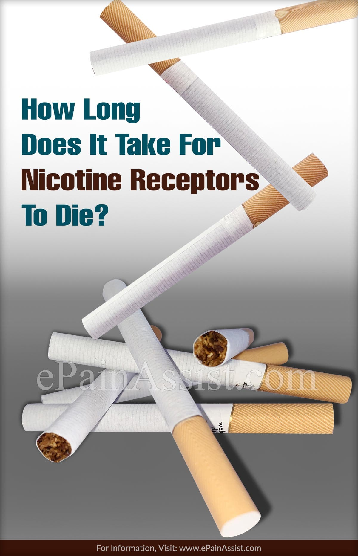 How Long Does It Take For Nicotine Receptors To Die?