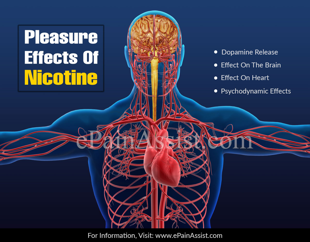 Pleasure Effects Of Nicotine