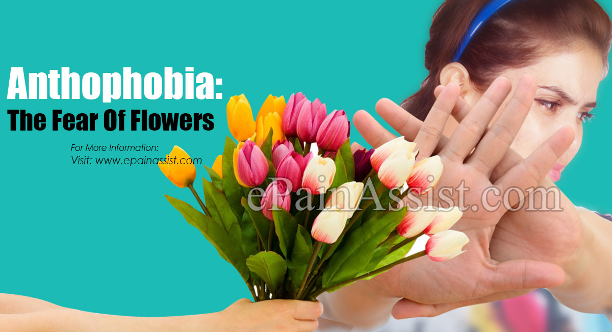 Anthophobia: The Fear Of Flowers: