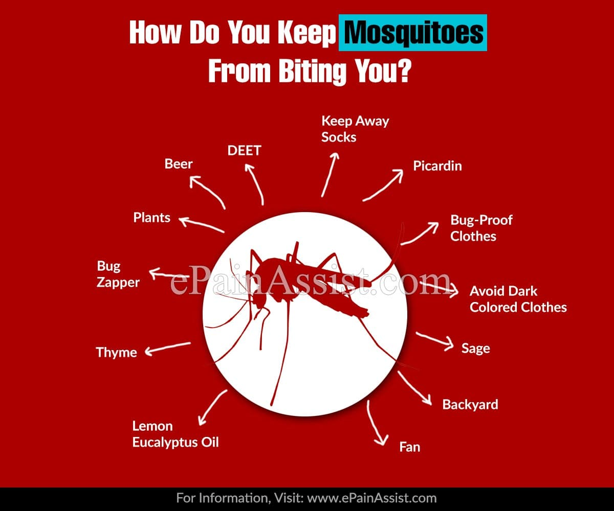 How Do You Keep Mosquitoes From Biting You?