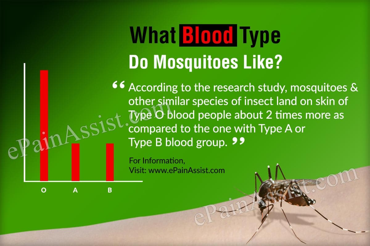 What Blood Type Do Mosquitoes Like?