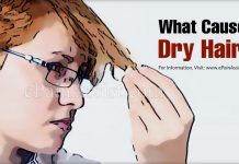 What Causes Dry Hair & Which are the Natural Moisturizers For Dry Hair?