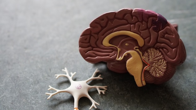How Can the Risk of Strokes in Young People be Decreased