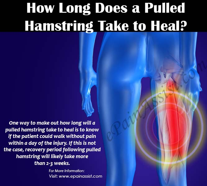 How Long Does a Pulled Hamstring Take to Heal?