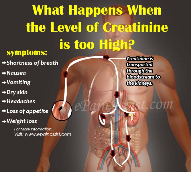 What Happens When the Level of Creatinine is too High?