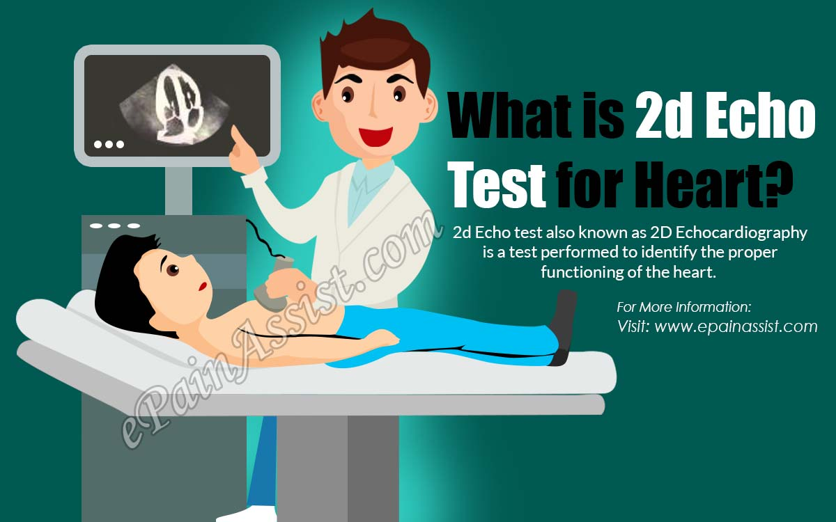 what is 2d echo test for heart
