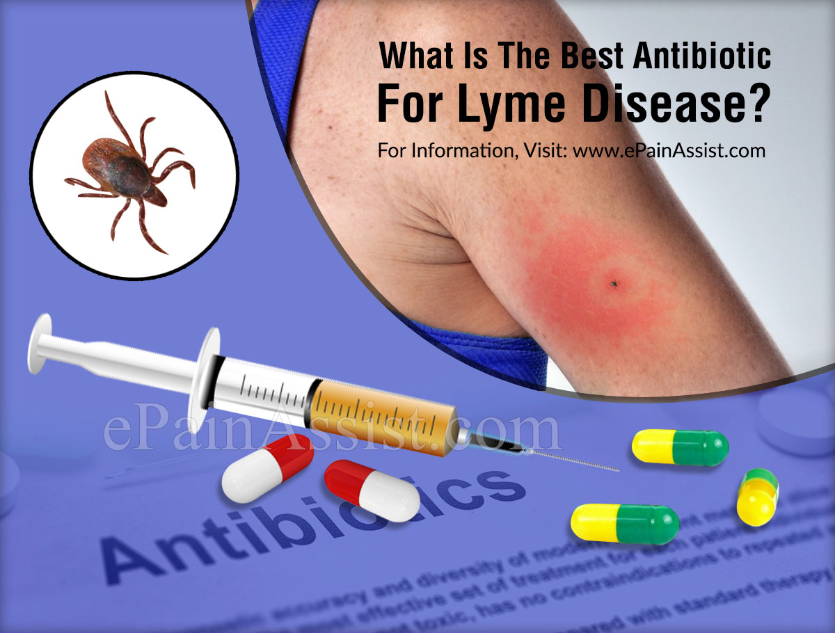 What Is The Best Antibiotic For Lyme Disease?