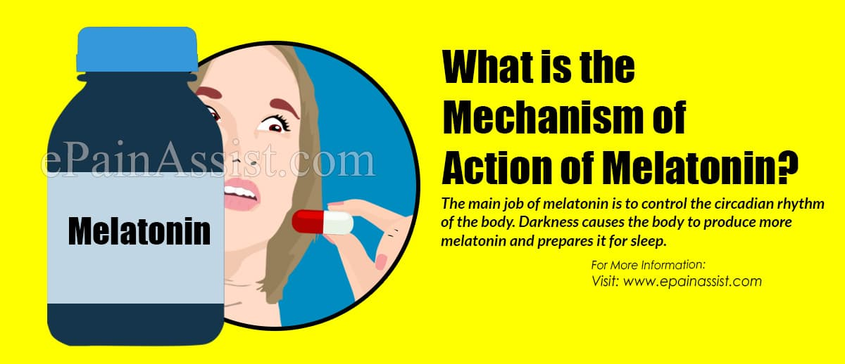What is the Mechanism of Action of Melatonin?