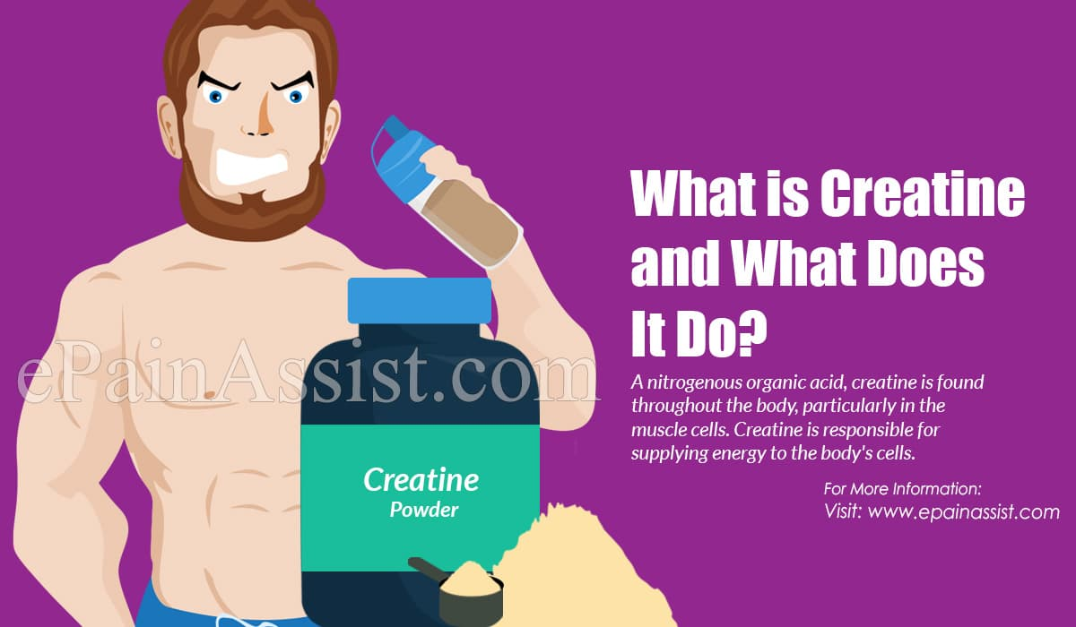 What is Creatine and What Does It Do?
