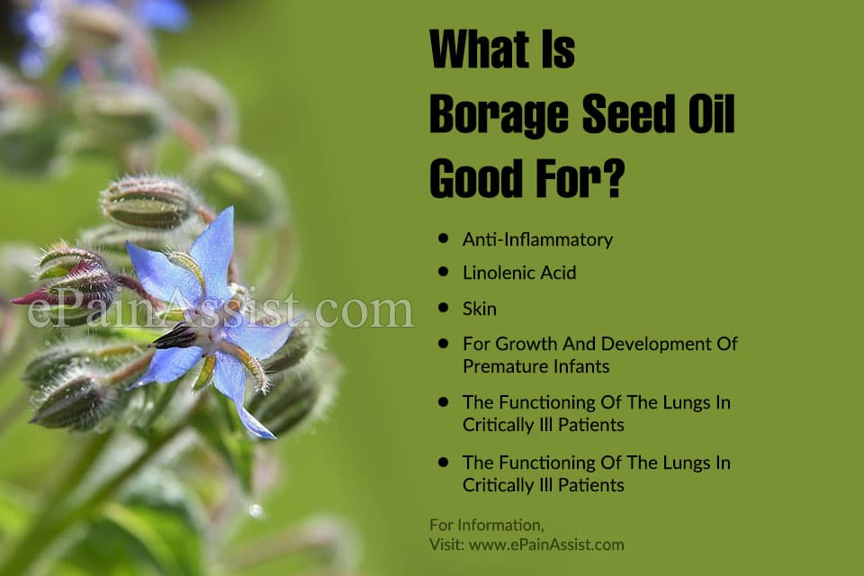 What is Borage Seed Oil Good For?