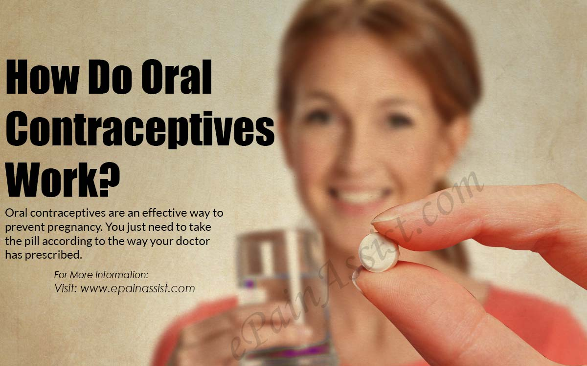 How Do Oral Contraceptives Work?