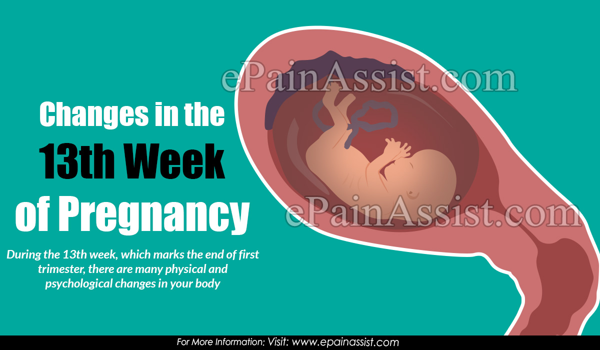 Changes in the 13th Week of Pregnancy