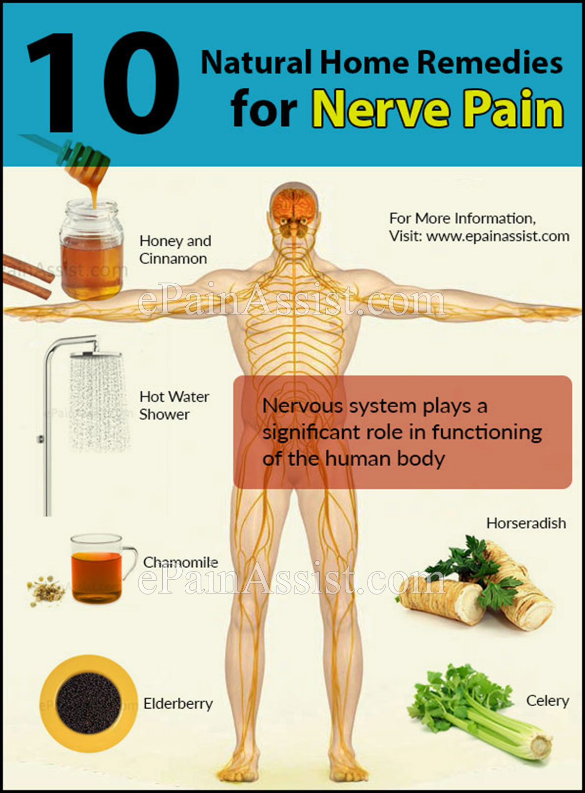 Natural Cure For Shingles Nerve Pain